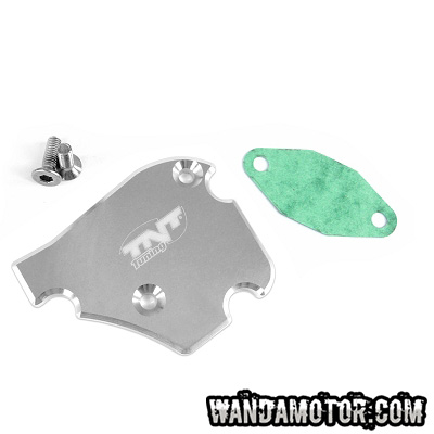 Oil pump cover Derbi/Piaggio