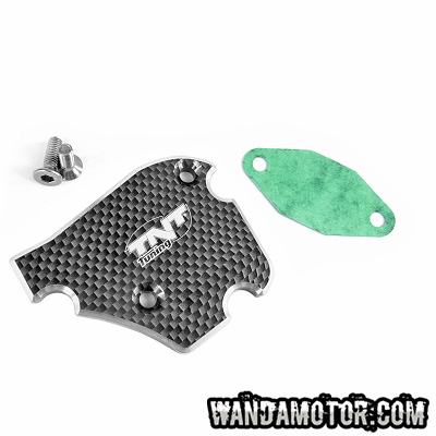 Oil pump cover carbon Derbi/Piaggio