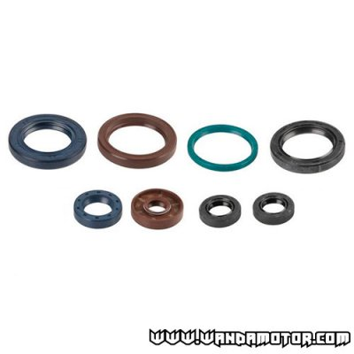 Oil seal kit Athena Minarelli AM6