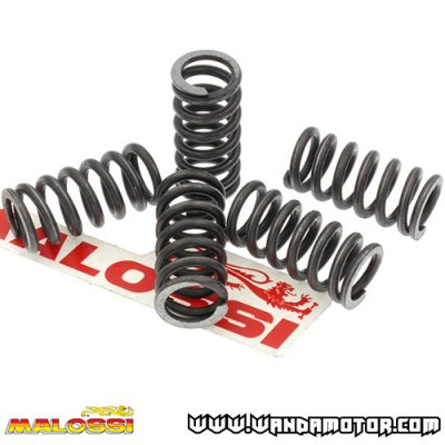 Clutch spring kit Malossi Derbi, PV
